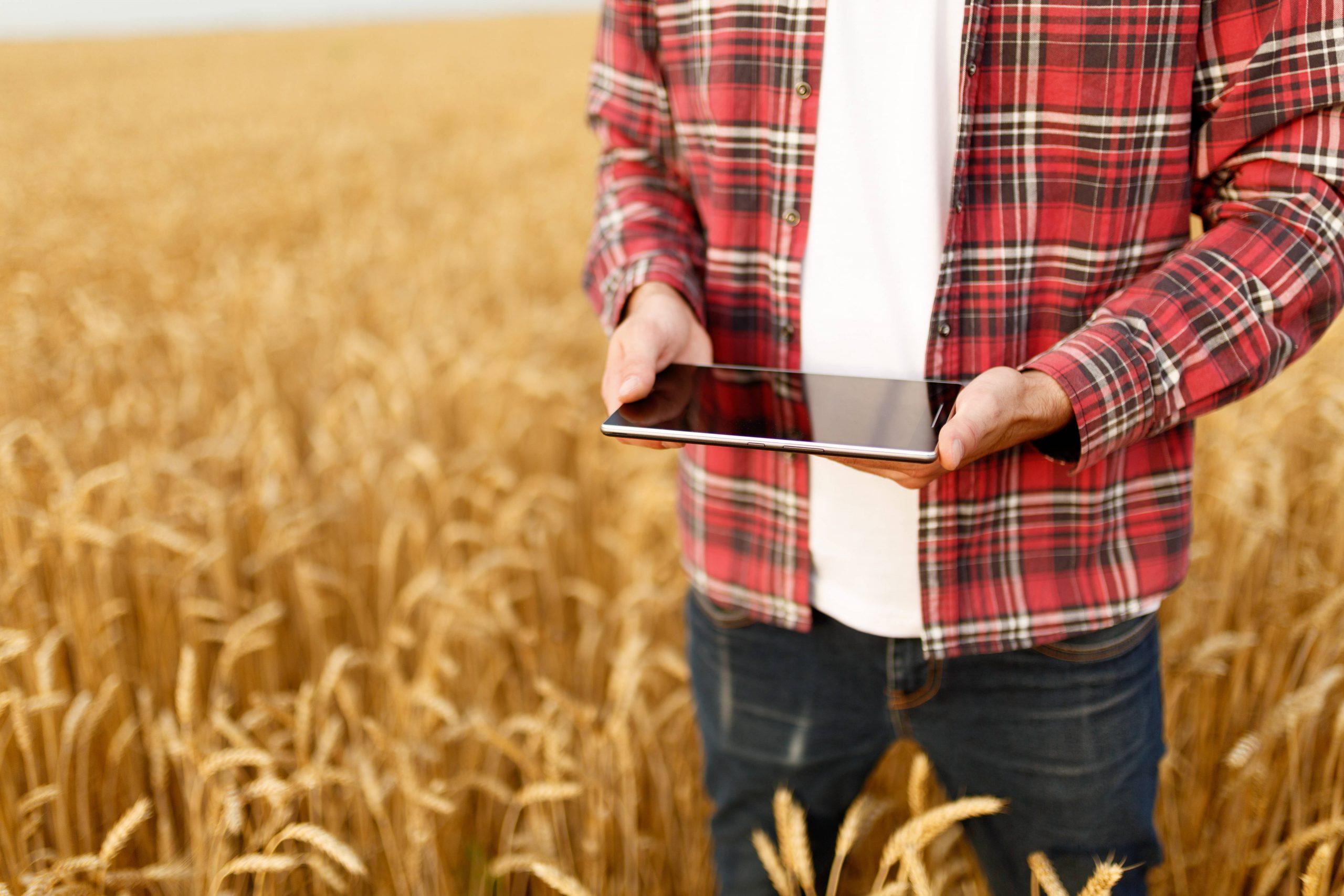 Mayor cobertura de Internet en el rural gallego